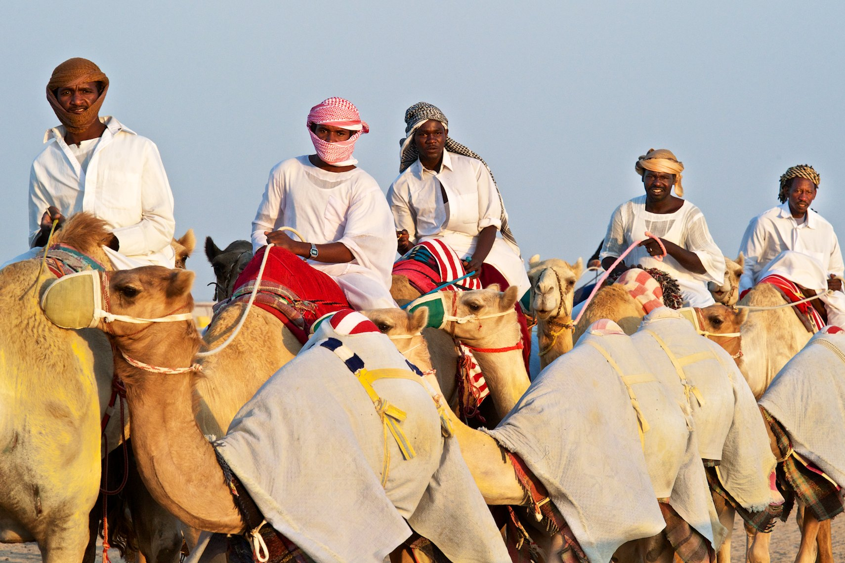 Qatar Al Shahaniya camel race training 2