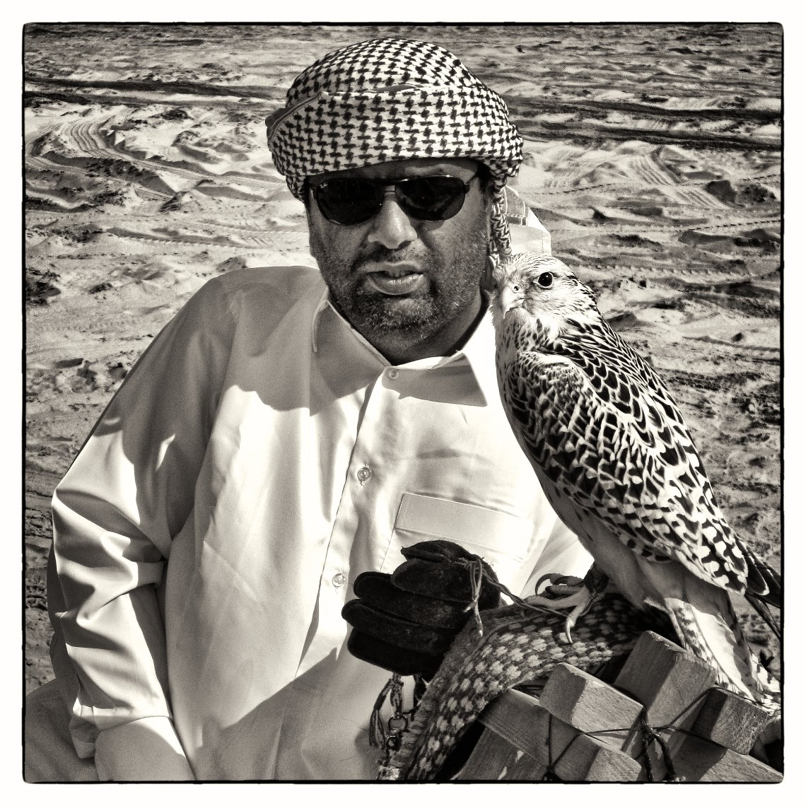 Qatar Inland Sea, man with falcon